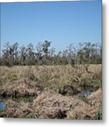 New Orleans - Swamp Boat Ride - 121292 Metal Print