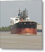 New Orleans Visitior On The Mississippi Metal Print