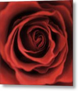 Close Up Heart Of A Red Rose Metal Print