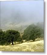 Mist In The Californian Valley Metal Print