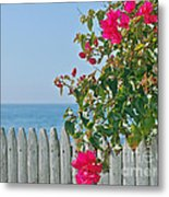 New Photographic Art Print For Sale On The Fence Montecito Bougainvillea Overlooking The Pacific Metal Print