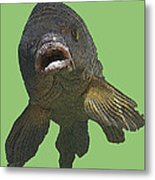 New Photographic Art Print For Sale   Open Mouthed Fish In Green Water Metal Print