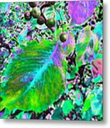 New Years Eve V7 Metal Print by Kenneth James