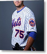 New York Mets Photo Day Metal Print