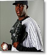 New York Yankees Photo Day Metal Print