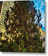 New York's Holiday Tree Metal Print