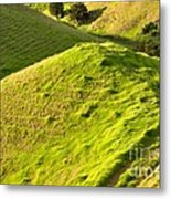 New Zealand Farmland Metal Print