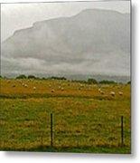 New Zealand Sheep Farm Metal Print