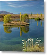 New Zealand, South Island, Mackenzie Metal Print