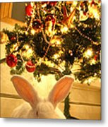 New Zealand White Rabbit Under The Christmas Tree Metal Print