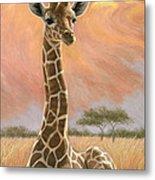 Newborn Giraffe Metal Print