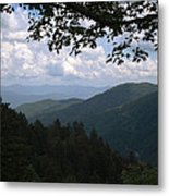 Newfound View Metal Print