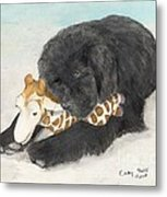 Newfoundland Dog In Snow Stuffed Animal Cathy Peek Art Metal Print
