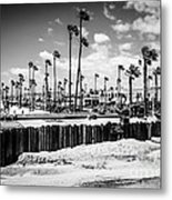 Newport Beach Dory Fishing Fleet Black And White Picture Metal Print by Paul Velgos