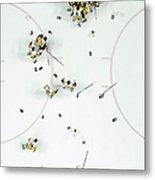 Nhl Jun 11 Stanley Cup Finals Game 6 - Metal Print
