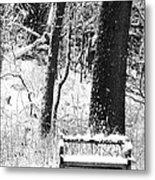 Nichols Arboretum Metal Print