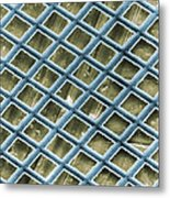 Nickel Electron Micrograph Grid Metal Print by David M. Phillips