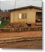 Nigerian House Metal Print