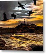 Night Flight Metal Print by Bob Orsillo