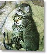 Night Night Kitties Metal Print