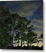 Night Pines Metal Print