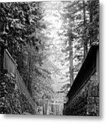 Nikko Pathway And Fog Metal Print