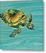 Nik's Turtle Metal Print by Emily Brantley