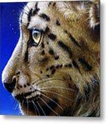 Nina The Snow Leopard Metal Print