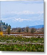 Nisqually Delta Of The Nisqually National Wildlife Refuge Metal Print