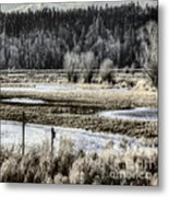 Nisqually Nest Boxes Metal Print