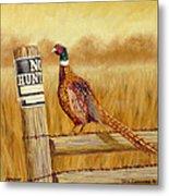 No Hunting   Pheasant Metal Print