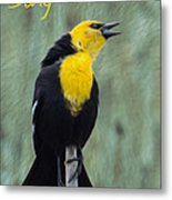Yellow-headed Blackbird Singing Metal Print