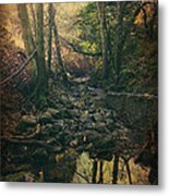 No Matter How Far Metal Print by Laurie Search