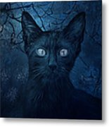 No Place For Scaredy Cats Metal Print by Hazel Billingsley