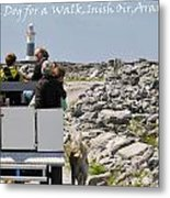 It's A Dogs Life Metal Print