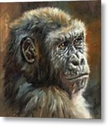 Noble Ape Metal Print