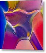 Noble Colors Metal Print