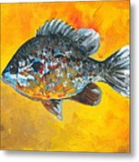 North America Sunfish Metal Print
