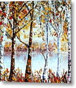 North Country Lake Superior Birch Trees Early Autumn Metal Print