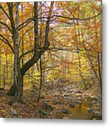 North Creek Autumn - Mid Afternoon - 04043 Metal Print by Byron Spencer