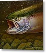 North Shore Steelhead Metal Print by Jon Q Wright