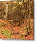 Northumberland, England  A Creek Metal Print