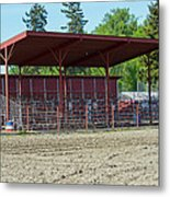 Northwest Rodeo Time Metal Print