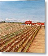Norway Farm Metal Print