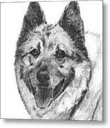 Norwegian Elkhound Sketch Metal Print