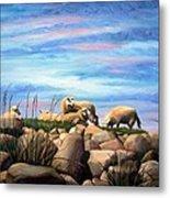Norwegian Sheep Metal Print by Janet King