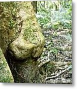 Nose Tree In Gwandanaland Metal Print