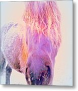 I'm The Famous Winter Nosy Spirit But I Don't Care  Metal Print by Hilde Widerberg