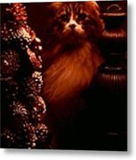 Not A Creature Was Stirring... Metal Print