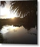 Not Quite Black And White - Sunset Metal Print